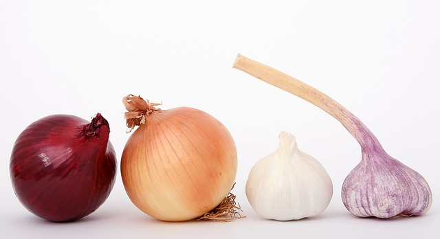 Onion Bulbs